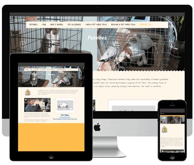 Petvibes | Alternative Health Care for Pets | Allergy Elimination | New York